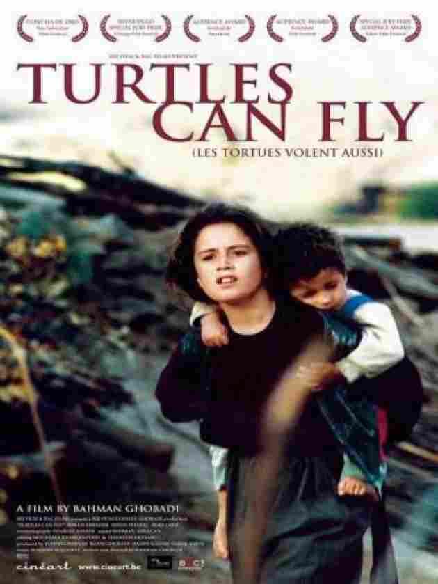 Las Tortugas Pueden Volar