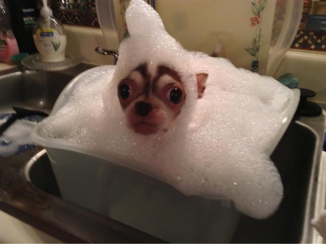 Uno que se pasó haciendo espuma