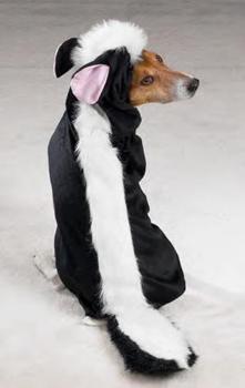 The skunk