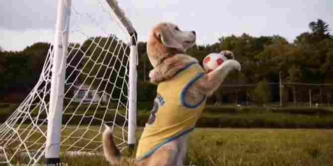 El millor porter