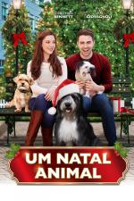 Um Natal Animal