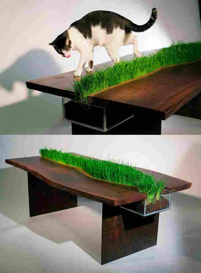 Stół, aby poczuć trawę