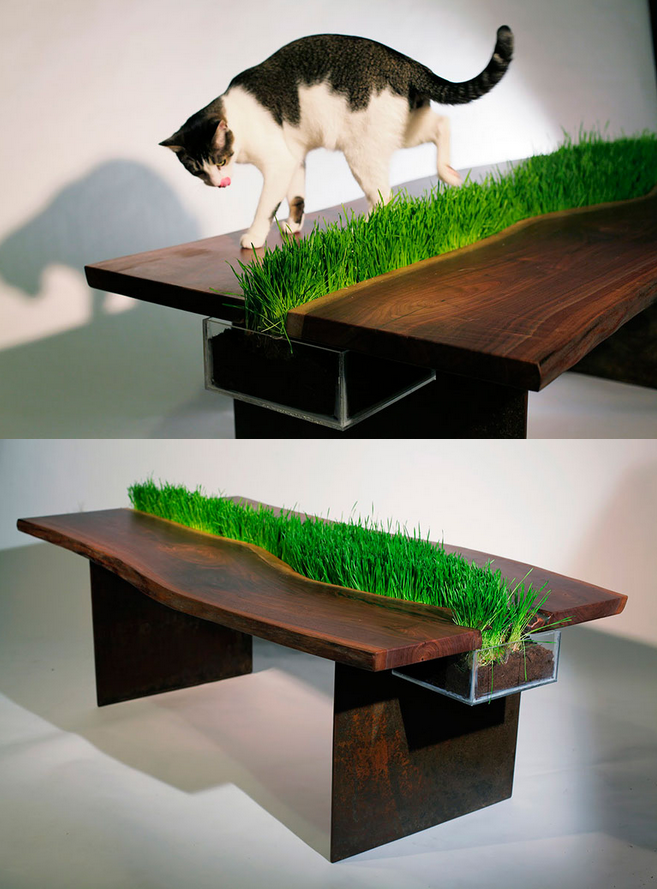 Table to feel the grass
