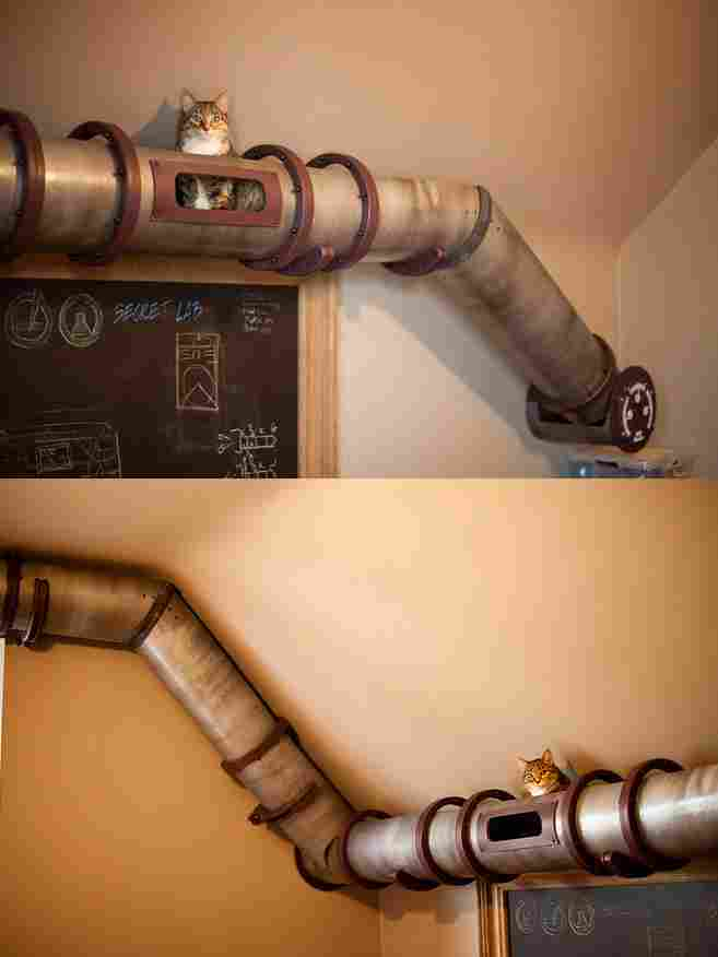 Tubes to move around the house