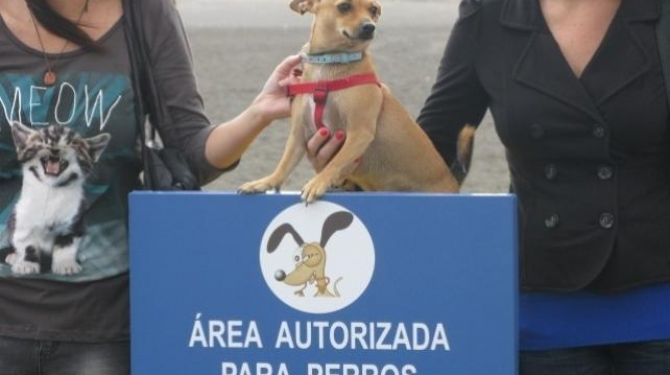 Las mejores playas caninas de España