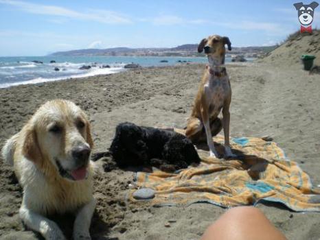 Playa de la Sal en Casares (Málaga)