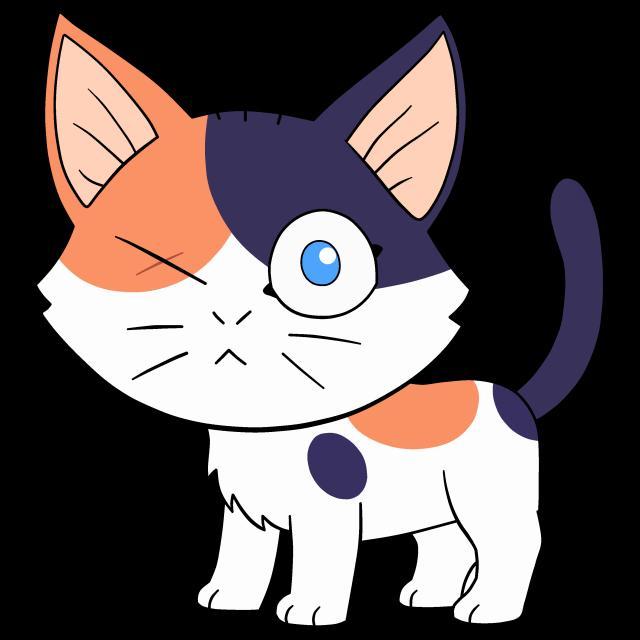 Steven gato.