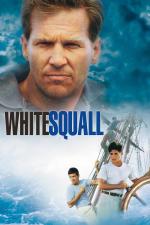 Tormenta blanca
