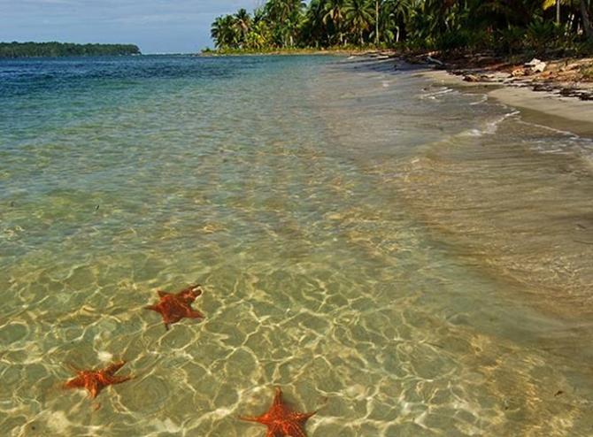 Звездный пляж