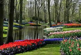 Голландская