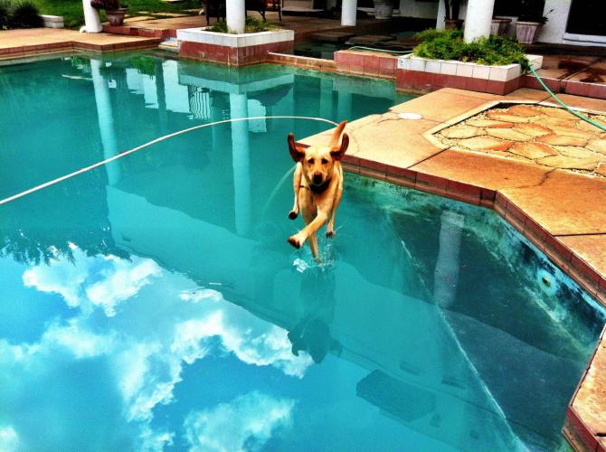 ¡Amo! ¡Puedo caminar sobre las aguas!