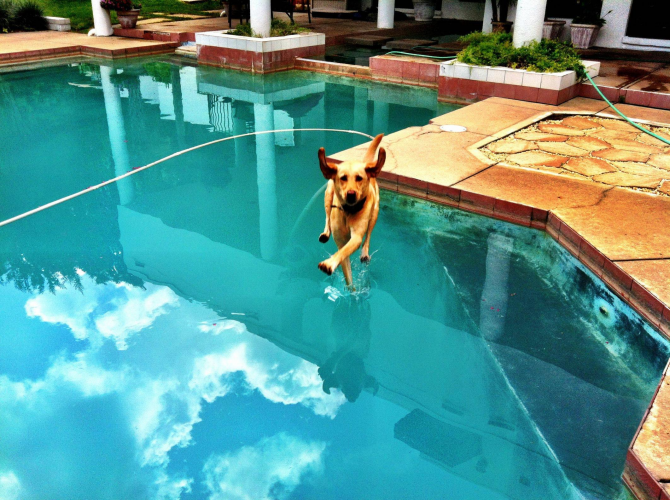 Eu amo Eu posso andar na água!